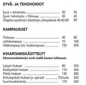Salonki2-2